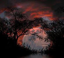 Moonlit night by chittnchat