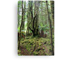 Creepy Crawley Forest - South West Tasmania Metal Print