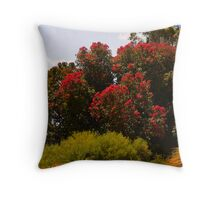 Brilliant red ficifolia Throw Pillow