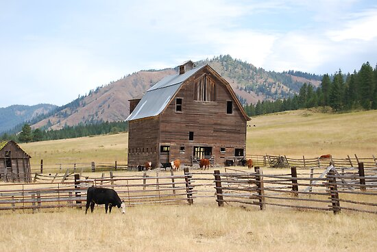 Old Country Barn by Tori Snow