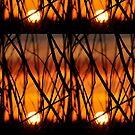 Fire by Coralie Plozza