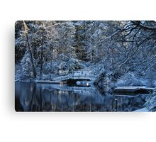 Winter Lake Reflections Canvas Print
