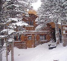 Brainard Cabin by Paul Magnanti