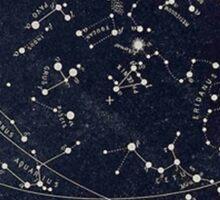 Horoscope Constellations  Sticker