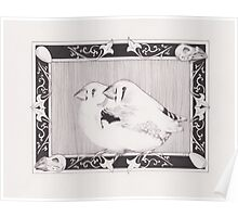Dom's Finches Poster