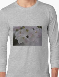 Spring is Pink Long Sleeve T-Shirt