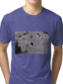 Spring is Pink Tri-blend T-Shirt
