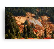 Fall on Mt Rainier Canvas Print