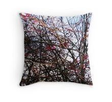 Spring Is In the Air... Throw Pillow