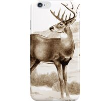 White-tailed Stag Sniffing the Air iPhone Case/Skin