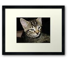 Guess who? : ) Framed Print