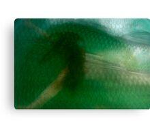 Undersea 11 Canvas Print