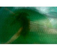 Undersea 11 Photographic Print