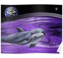 dolphins of the earth Poster