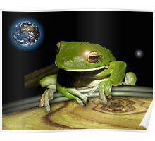 frogs life on earth Poster