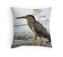 Striated Heron Throw Pillow