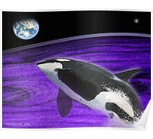 orcas life on earth Poster