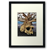 ancient mind of the trees Framed Print