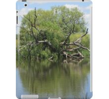 Still water and old tree trunk iPad Case/Skin