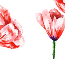 Watercolor poppies illustration Sticker