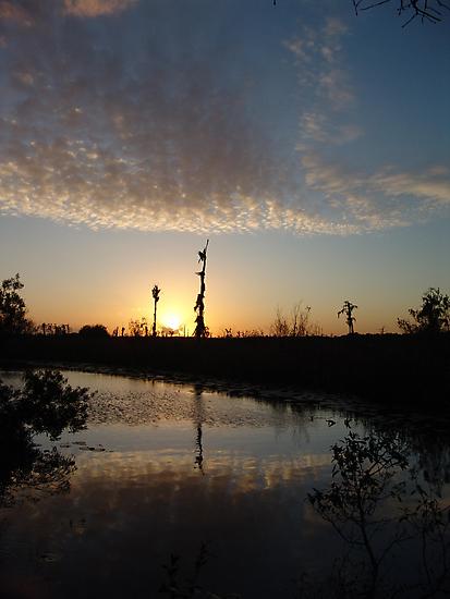 Sunset January 21, 2009 on Econfina Creek by May Lattanzio