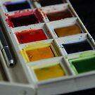 Watercolours by Jeremy Owen