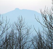 Pilot Mountain from the Blue Ridge Parkway by Donnie