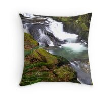 Oh how Sweet Throw Pillow