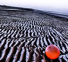 Red Frozen Ball by Gareth Holloway