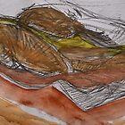 landscape 16.02.15 (1) by H J Field