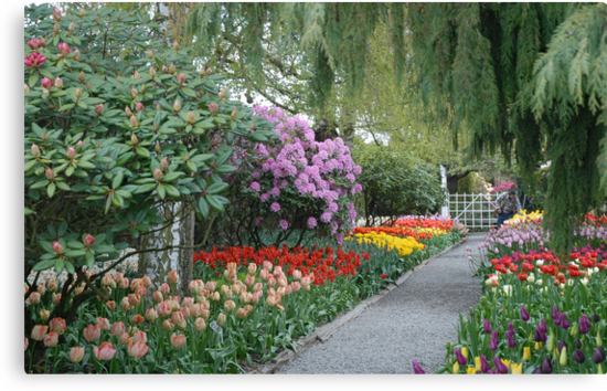 Beautiful Spring Garden by Marjorie Wallace