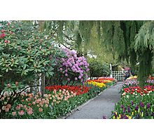 Beautiful Spring Garden Photographic Print