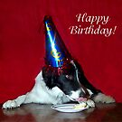 Happy 1st Birthday Champ! by Glenna Walker