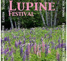 Fields of Lupine Festival by Wayne King