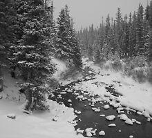 Winter Landscape by Paul Magnanti