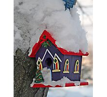 Frozen Home Photographic Print