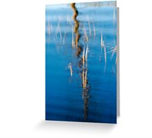 Reed Reflection Greeting Card