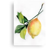 Branch of  lemons with leaves Canvas Print