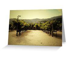 Napa Vineyard Greeting Card