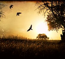 Counting Crows by Wulff