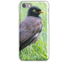 Mynah Bird Heaven iPhone Case/Skin