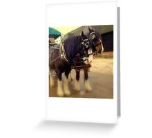 Horse & Carriage  Greeting Card