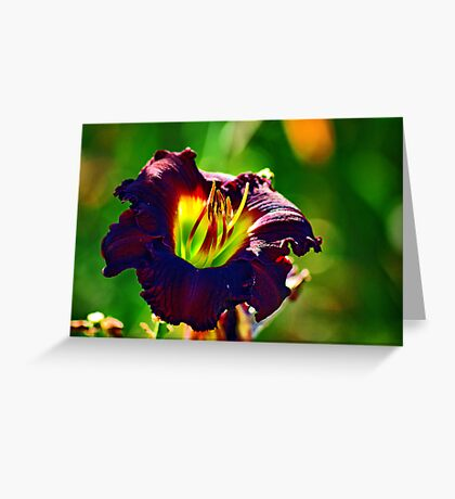 Lamp Shade Greeting Card