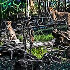 The Cheetah Dubbo Zoo Family by miroslava
