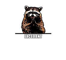 Evil Raccoon Photographic Print