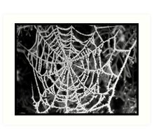 frost on web Art Print