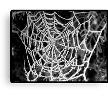 frost on web Canvas Print