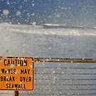 Pacifica Seawall by Stuart Green