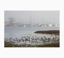 Marbled Godwits, Elkhorn Slough One Piece - Long Sleeve