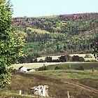Rural Quebec Farm by George Cousins